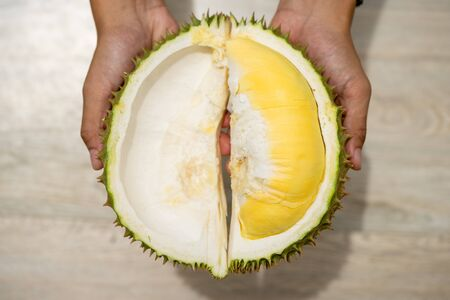 Beautiful yellow durian, ready to eat in the hands of consumers.