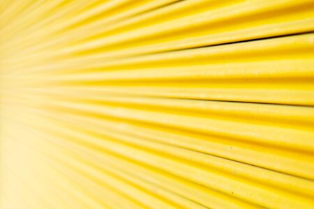 Yellow steel door, beautiful proportions. Can be used as a design background. Imagens