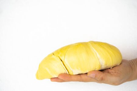 Beautiful yellow durian, ready to eat in the hands of consumers. on the white Background.