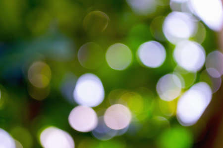 hi resolution: Soft green bokeh background