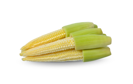 Baby corn isolated on white background