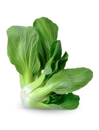 Bok choy vegetable isolated on white background