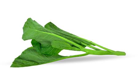 Chinese kale isolated on white background.