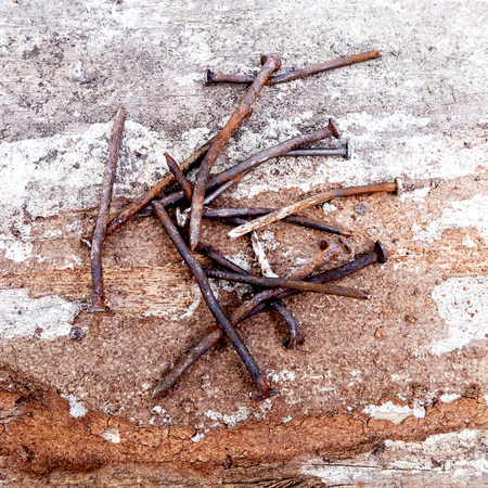Old nails on wood photo