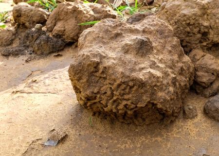 sandstone: Sandstone