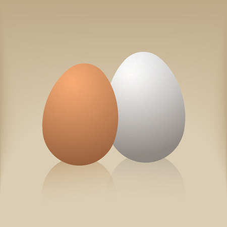 Egg on a brown background