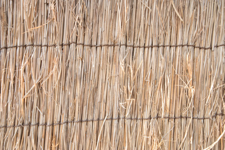 shanty: Thatched roofs texture