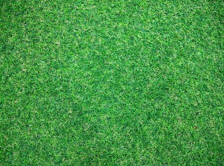 gass: artificial grass texture or grass texture golf and grass texture