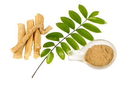 Eurycoma longifolia leafs,root on white background. Reklamní fotografie - 105995601