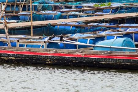 fish farm: fish farm Stock Photo