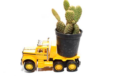 cactus on toy car the truck isolated on a white  photo