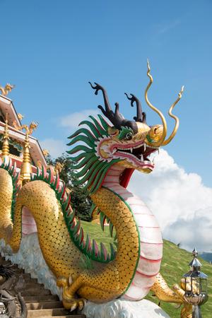 pla: wat hyua pla kang , Chiang Rai, Thailand  Stock Photo