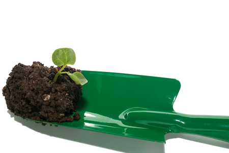 gardening tools and soil with green seedling isolated on a white background photo