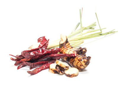 alpinia: Variety of Thai cooking ingredients:lemon grass, galangal, and chili