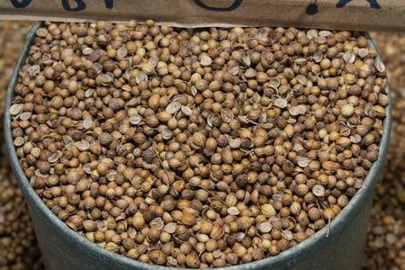 cilantro: semillas de cilantro  Foto de archivo