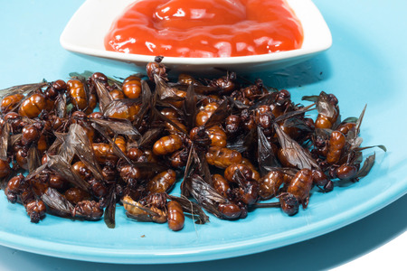 entomology: ried ant  fried  subterranean ants with chili sauce isolate on white Stock Photo