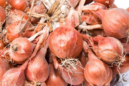 shallot: Shallot onions in a group on white