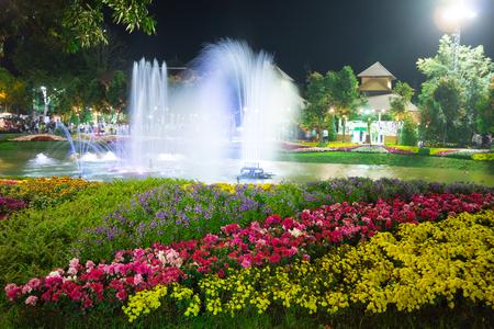 fountainhead: The fountain in flower garden