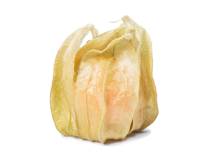 grosella: uchuva aislante en blanco Foto de archivo