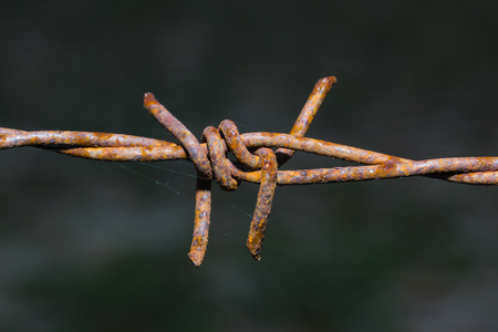 invade: Rusty barbed wire in Thailand farm