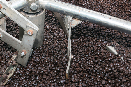 Roaster: Freshly roasted coffee beans in a coffee roaster in Thailand Stock Photo