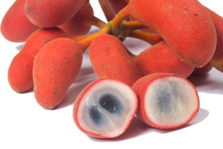 teats: Seed of Uvaria rufa Blume fruit(Carabao teats), Herb rare in east of Thailand