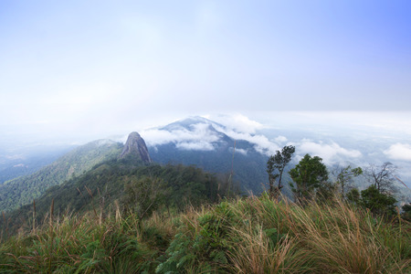 mountain in north Thailand through the fog