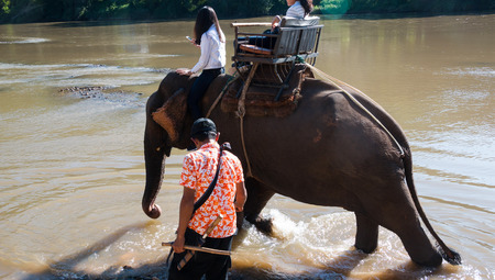 mahout: Elephant riding across the river for tourists in nort of Thailand Stock Photo