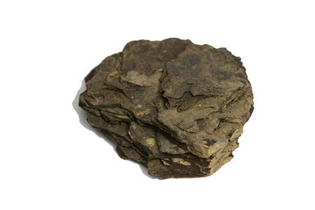 oil Shale mineral stone