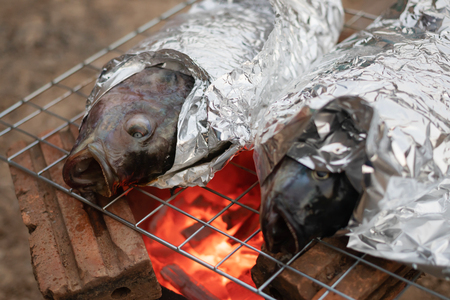 fresh Tilapia fish on stove Grill