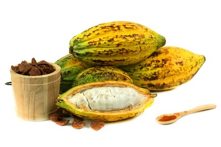 Fresh cacao fruit with cocoa (Products from cacao)
