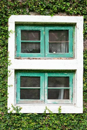 Ancient house window Covered with vines or climber Banco de Imagens