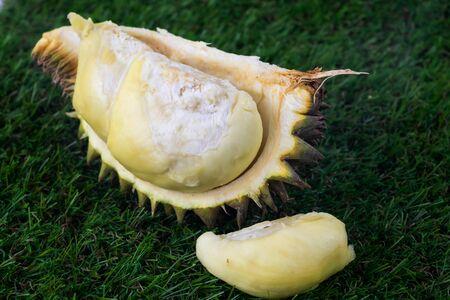 Durian fruit Famous fruits from Thailand Reklamní fotografie