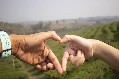 Heart shaped hand at Tea garden