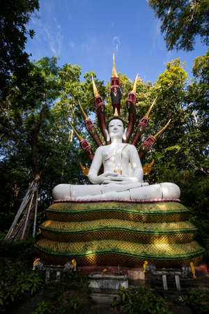 Buddha statue is Naga Buddha image In the middle of the forest temple on the mountain of Thailand