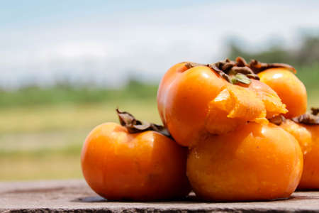 Persimmons rotten on the wood Stock fotó