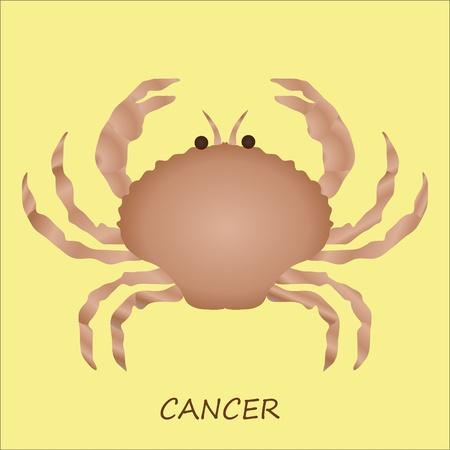 cancer crab: Astrological symbol of Cancer Illustration