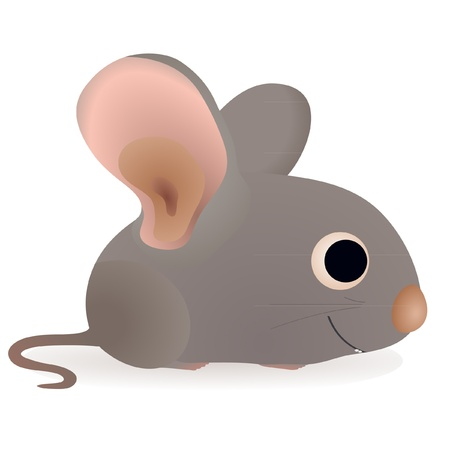 Little funny mouse Stock Vector - 13762357