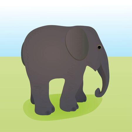 Elephant  in natural environment