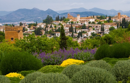 skyline of alhambra garanda spain with siera nevada hill in the backgound and green shrubs in the foreground Stock Photo - 14417725