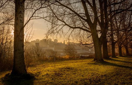 View of stockport skyline through branches of trees  Greater Manchester England