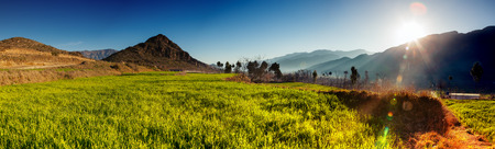 Scenic view of valley Swat  Swat is a valley and an administrative district in the Khyber Pakhtunkhwa, Pakistan  It is the upper valley of the Swat River, which rises in the Hindu Kush range  photo