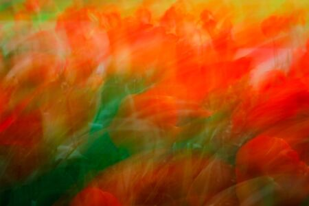 blown away: An impressionistic image created by colorful flowers blown away by wind.