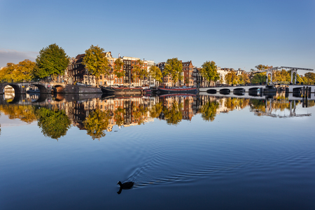 amstel: Reflection of trees and houses in still water of Amstel river, Amsterdam, Netherdlands.