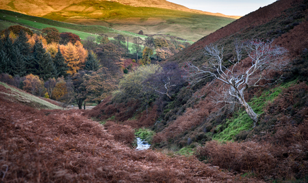 distric: Autumn colors in the Peak distric national park, England.