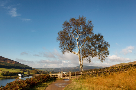 Countryside Walk Along Dovestone reservoir in Greater Manchester, England. Stock Photo