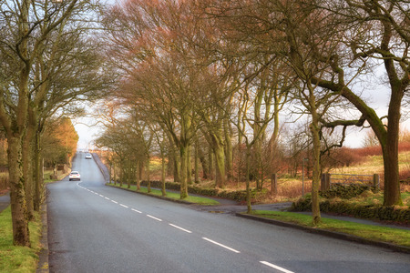 Rural country road through the English woods near Nelson, Lancashire