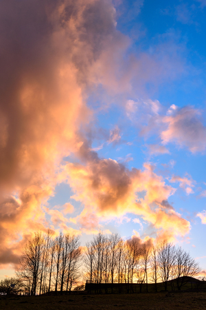 Colorful cloudscape at sunset with a tree silhouette
