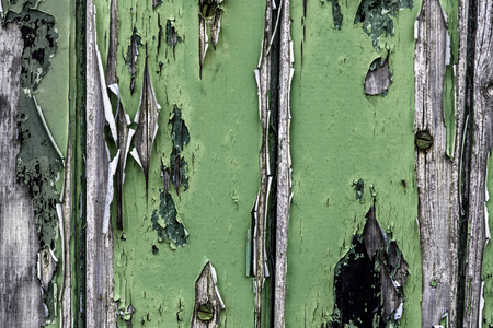 Peeling paint textured of wood