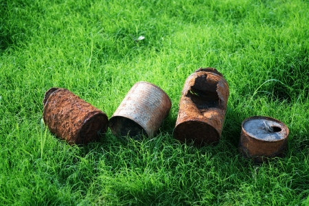 eternal life: rusty can on young grass